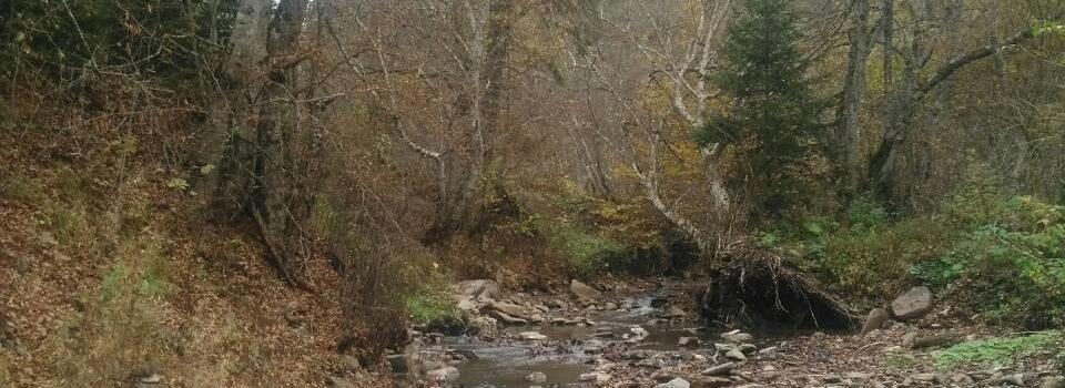 Obavještenje o prekidu vodosnabdijevanja